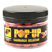Бойлы CCB плавающие Pop-Ups Gammarus Belachan 10мм 35гр