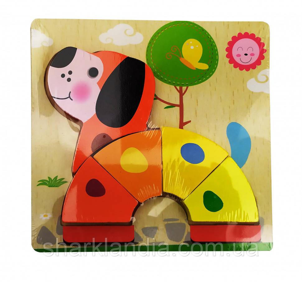 Деревянная игрушка Пазлы MD 0904 (Собака)