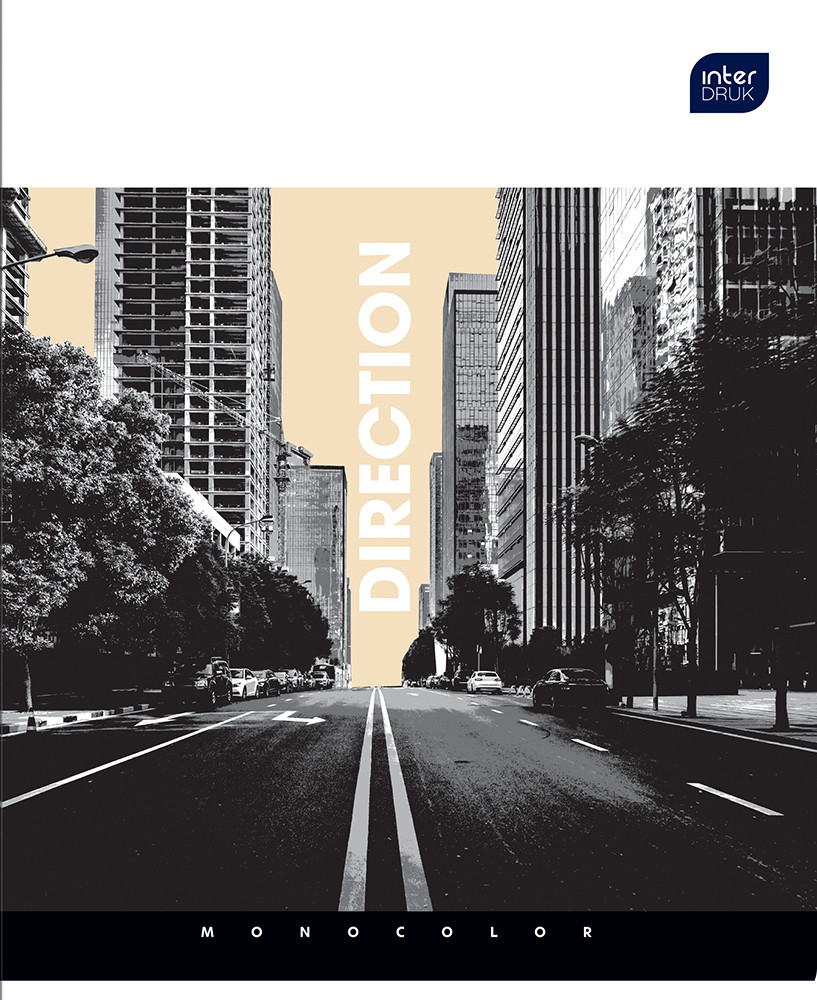 Набор тетрадей ученических Monokolor 2 шт А5+ 96=, Interdruk Premium