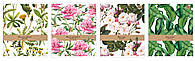 Набор тетрадей ученических Botanique 4 шт А5+ 60#, Interdruk Premium
