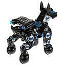Інтерактивна собака Доберман на пульті Велика, фото 3