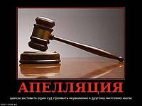 Обжалование постановления по административному делу ДТП