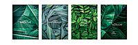 Набор тетрадей ученических Wild Leaf 8 шт по 2 каждого дизайна А5+ 12#, Interdruk Premium