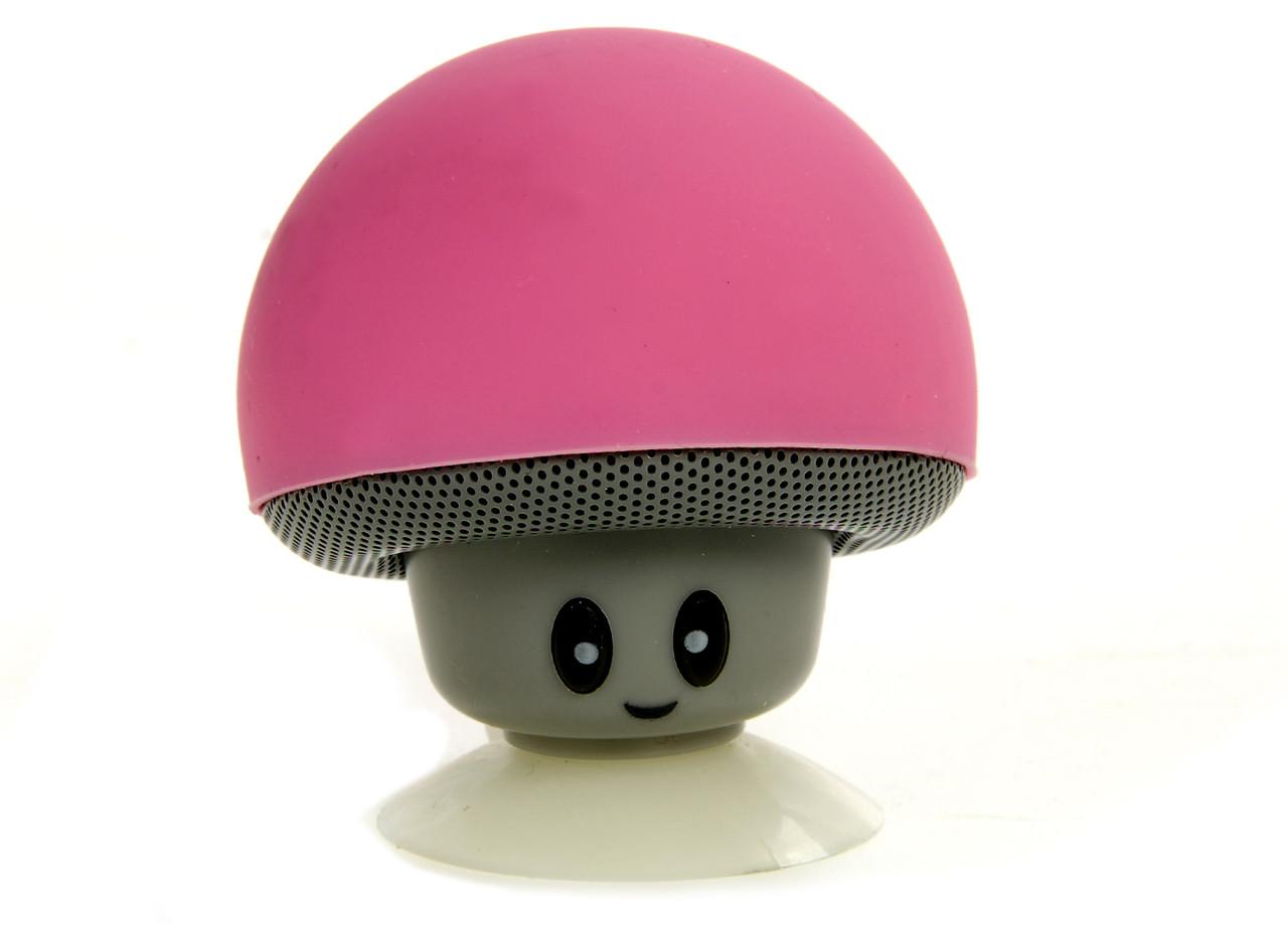 Bluetooth - колонка Silver Crest  L15-990120_01 Розовый
