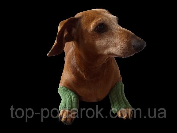Шерстяные леггинсы гетры для собаки,одежда для собак и котов