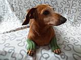 Шерстяные леггинсы гетры для собаки,одежда для собак и котов, фото 4