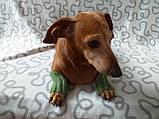 Шерстяные леггинсы гетры для собаки,одежда для собак и котов, фото 3