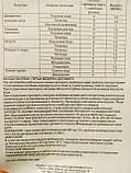 Біопрепарат інсектоакарицид контактно-кишковий Актофіт 400 мл Україна, фото 3