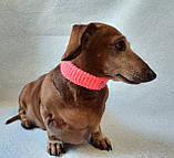 Вязанный ошейник для собаки или кота, фото 3