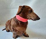 Вязанный ошейник для собаки или кота, фото 4