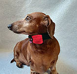 Вязанный рождественский ошейник для собаки или кота, фото 7