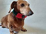 Вязанный рождественский ошейник для собаки или кота, фото 6