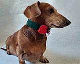 Вязанный рождественский ошейник для собаки или кота, фото 8