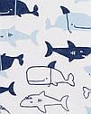 """Песочник картерс для мальчика """"Акулы"""" белый Carter's, фото 2"""