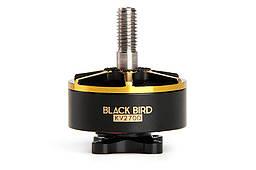 Мотор T-Motor BLACK BIRD 2207 2725KV 4S для мультикоптеров
