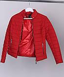 Короткая куртка демисезонная размер 42  X-Woyz LS-8820, фото 4