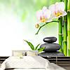 "Фото Обои ""Бамбук с белыми орхидеями на камнях"""