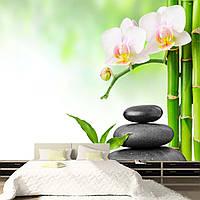 """Фото Обои """"Бамбук с белыми орхидеями на камнях"""", фото 1"""