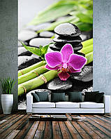 "Фото Обои ""Бамбук орхидея и камни"""