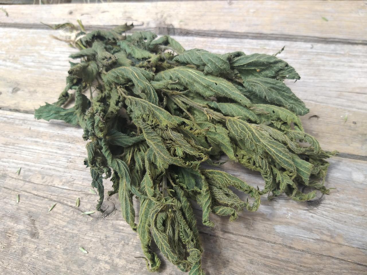 Сухоцвіт кропиви натуральної , 10 шт в пучку, 15 грн