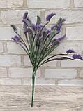 Мухоловка фіолетова, висота гілки 32 см, 40\35 (ціна за 1 шт. + 5 гр.), фото 6