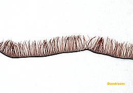 Реснички для кукол, игрушек, Коричневые, 8 мм, длина ленты 20 см