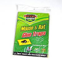 Ловушка-липучка от крыс и мышей 15х20 см