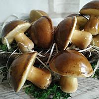 Муляж грибочка (маслята), пінопласт, висота 6.5 см., діам. 6.5 см., 25/19 (ціна за 1 шт. + 6 гр.)