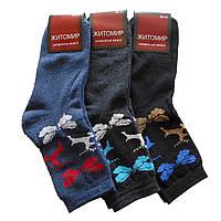 Женские махровые носки Житомир - 11,50 грн./пара (Олени), фото 1