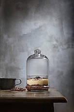 Бонбоньерка и стеклянный Колпак Клош 196мм Patisserie 96701 (1шт), фото 3