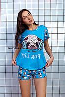 Пижама женская летняя голубая с принтом животного (Мопс) для дома и сна. Шорты + футболка, хлопковая. S M L