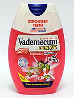 Зубная паста Vademecum Junior (от 6 лет) 2in1 75 мл, фото 1