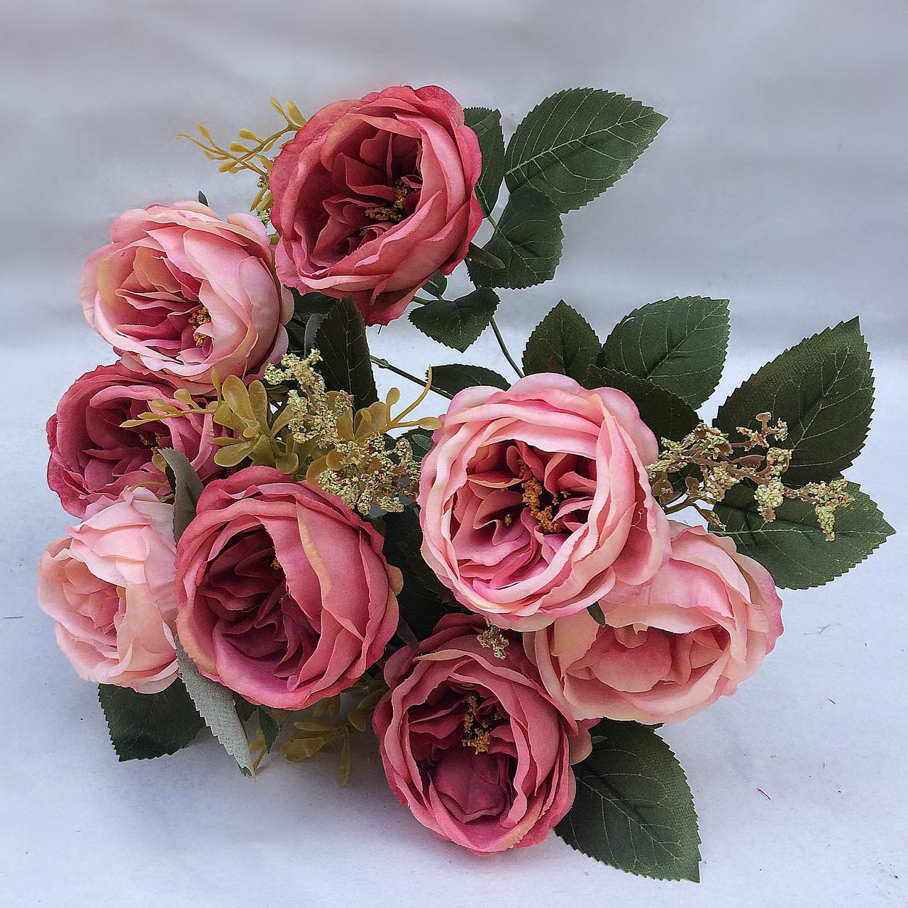 піоновидна троянда остін
