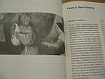 Код середньовіччя. Ієронім Босх, фото 5