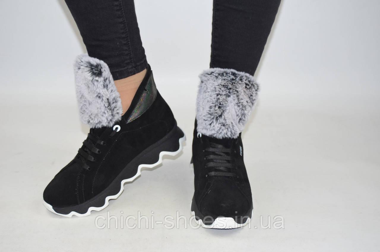 Ботинки женские зимние Eclipse 542-8-1 чёрные замша