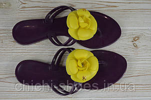 Вьетнамки женские San Rabel А-01 фиолетовые