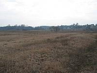 Земельный участок 45 соток рядом водоем 10 гектар.
