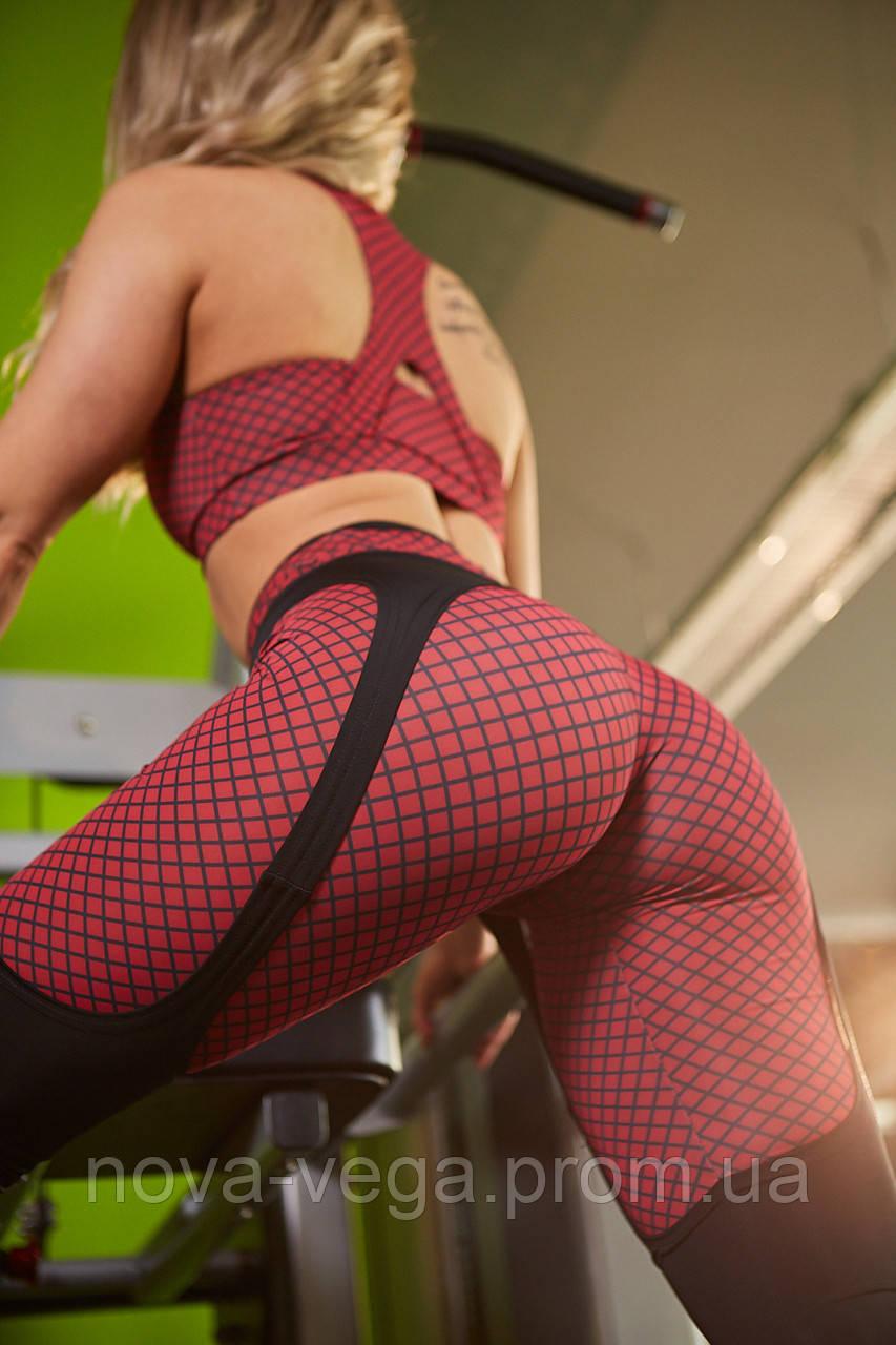 Спортивные Женские Лосины Nova Vega Aguilera Red Print