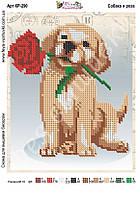 Схема для частичной зашивки бисером -Собака и роза