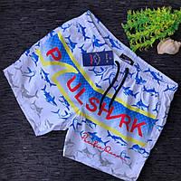 Мужские пляжные шорты с крутым рисунком акула S M L XL XXL короткие шорты реплика