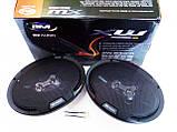 6x9 BOSCHMANN BM Audio XW-934FR 400W 3х полосные, фото 3