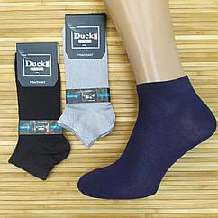 Носки мужские демисезонные короткие гладь DUCKS sock, БАМБУК, Турция, р.40-44, ассорти, 20014803