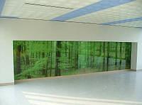 Стеклянная перегородка с фотопечатью на стекле