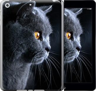Чохол EndorPhone на iPad 5 Air Гарний кіт (3038m-26)
