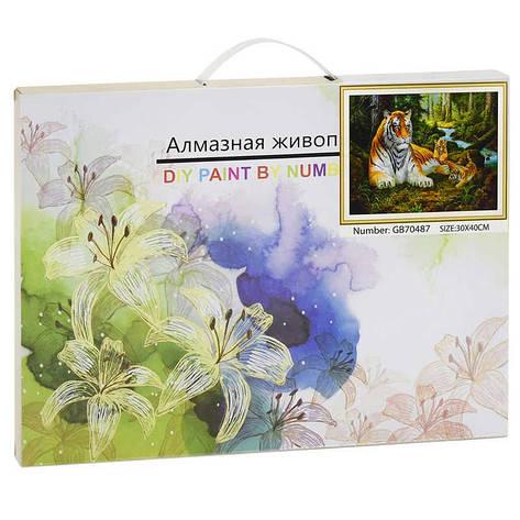 Алмазная мозаика GB 70487 (30) 40х30 см., 27 цветов, в коробке, фото 2