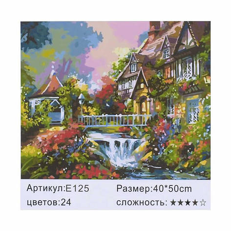 Картина по номерам E 125 (30) 40х50см, фото 2