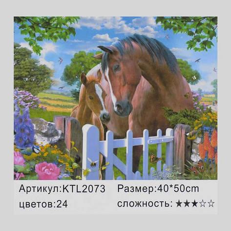 Картина по номерам KTL 2073 (30) в коробке 40х30, фото 2
