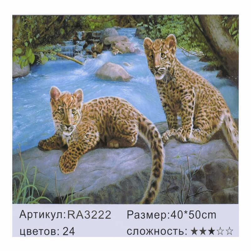 Картина по номерам RA 3222 (30) 40х50см