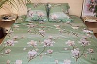 Двоспальне постільна білизна Barbara м'ятна
