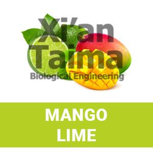 "Xi'an Taima ""Lemon Lime"""